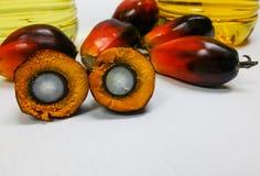 Las frutas de la palma y el aceite de palma, una fruta se corta para mostrar su corazón Fotografía de archivo libre de regalías