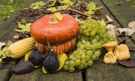 Las frutas del otoño Imagen de archivo libre de regalías