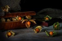 Las frutas del Physalis se escapan de una caja de joyería del vintage en un w rústico Foto de archivo