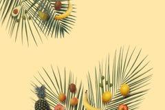 Las frutas del verano ponen completamente con el espacio de la copia en el fondo mínimo amarillo imágenes de archivo libres de regalías