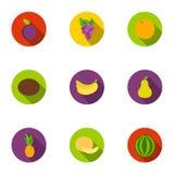 Las frutas fijaron iconos en estilo plano La colección grande de frutas vector el ejemplo común del símbolo Imágenes de archivo libres de regalías