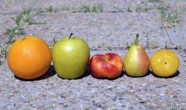 Las frutas maduras coloridas en piedras emergen en el jardín Imagenes de archivo