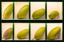 Las frutas maduras verdes del mango se presentan elegante en las células separadas para la venta en el mercado oriental asiático imagen de archivo libre de regalías