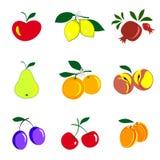 Las frutas y las bayas colorearon la colección de los iconos Conjunto de frutas Ilustración del Vector