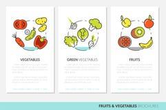 Las frutas y verduras enrarecen la línea folletos del negocio stock de ilustración
