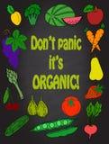Las frutas y verduras sanas del arte divertido de la cocina vector iconos creativos dibujados mano de la fruta del cartel de la d Foto de archivo
