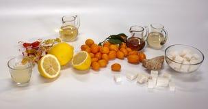 Ingredientes para los cócteles sin alcohol imagen de archivo