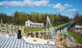 Las fuentes magníficas de la cascada en el palacio de Peterhof cultivan un huerto, St Petersburg 9 de mayo de 2015 Imágenes de archivo libres de regalías