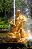 Las fuentes son naranja de Petergof Imagen de archivo