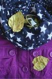Las gafas de sol, chaqueta púrpura, bufanda con blanco protagonizan, amarillo del otoño se van imagen de archivo