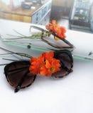 las gafas de sol del primer florecen la reflexión anaranjada de la ventana-aún de las flores del color dentro del espejo viejo li Foto de archivo