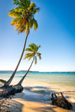 Las Galeras tropical beach in sunset Stock Photo