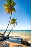 Las Galeras tropical beach in sunset. Dominican Republic Stock Photo