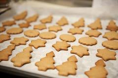 Las galletas acaban de salir del horno Imagen de archivo libre de regalías