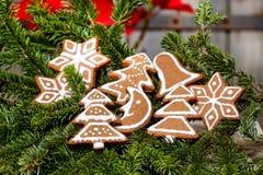 Las galletas del pan de jengibre en abeto ramifican, decoración de la Navidad Imagenes de archivo