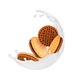 Las galletas deliciosas adentro salpican de la leche aislada en blanco Foto de archivo libre de regalías