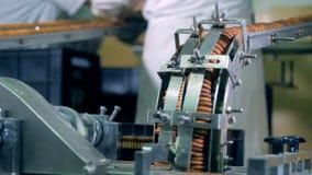 Las galletas van abajo de los conductos de la máquina de la fábrica almacen de video