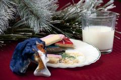 Las galletas y la leche de Papá Noel Fotos de archivo libres de regalías