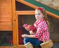 Las gallinas del criador embroman al granjero del ranchero de la muchacha con los polluelos en gallinero de pollo imagen de archivo libre de regalías