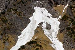 Las gamuzas reúnen en campo de nieve en la montaña del este de la cara de Watzmann Foto de archivo libre de regalías