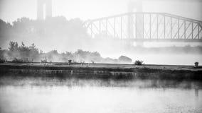 Las gaviotas se sientan en el embarcadero en mañana brumosa Imagen de archivo libre de regalías