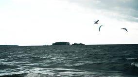 Las gaviotas vuelan sobre el agua en una tempestad de truenos metrajes