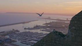 Las gaviotas vuelan sobre el puerto en la puesta del sol en a cámara lenta metrajes