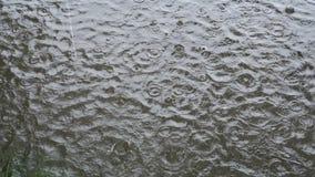 Las gotas de agua caen en el agua sucia en un día melancólico del otoño La visión desde la tapa metrajes