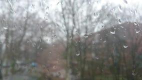 Las gotas de agua sobre el vidrio almacen de video