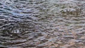 Las gotas de lluvia que bajan y que hacen la ondulación, cielo se reflejan en el agua oscura Animación del fondo del tiempo almacen de metraje de vídeo