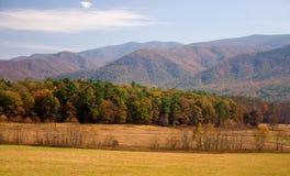 Las grandes montañas ahumadas Imagen de archivo