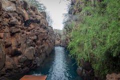 Las Grietas, νησί Santa Cruz, Galapagos νησιά, Ισημερινός Στοκ Εικόνες