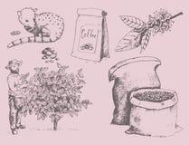 Las habas dibujadas mano de la cosecha del granjero de la producción del café en el dibujo del árbol y del vintage beben el postr stock de ilustración