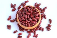 Las habas rojas arreglaron las semillas hermosas en un fondo blanco Foto de archivo libre de regalías
