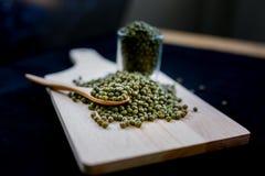 Las habas verdes son ricas en la vitamina B1 Fotos de archivo libres de regalías