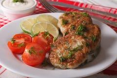 Las hamburguesas de los pescados se cierran para arriba en una placa y una salsa blancas horizontal Imágenes de archivo libres de regalías