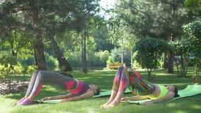 Las hembras de la aptitud que hacen el medio puente plantean ejercicio de la yoga metrajes
