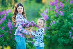 Las hermanas con la madre que juega en lila floreciente cultivan un huerto Niñas lindas con el manojo de lila en flor Niño que go Foto de archivo