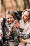 las hermanas de los gemelos leyeron el libro en bosque del otoño Imagenes de archivo