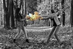 Las hermanas que luchan para la felpa juegan en el parque del otoño Foto de archivo libre de regalías