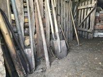 Las herramientas agrícolas del vintage se colocan en fila en un granero de madera: rastrillos, azadas, bieldo, palas y más Imagen de archivo libre de regalías