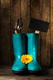 Las herramientas que cultivan un huerto con las botas de goma azules, amarillean las flores de la primavera encendido Fotografía de archivo
