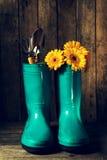 Las herramientas que cultivan un huerto con las botas de goma azules, amarillean las flores de la primavera encendido Imagen de archivo