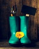 Las herramientas que cultivan un huerto con las botas de goma azules, amarillean las flores de la primavera encendido Imagen de archivo libre de regalías