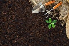 Las herramientas que cultivan un huerto en suelo del jardín texturizan la opinión superior del fondo Imágenes de archivo libres de regalías