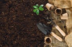 Las herramientas que cultivan un huerto en suelo del jardín texturizan la opinión superior del fondo Fotos de archivo libres de regalías