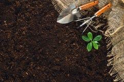 Las herramientas que cultivan un huerto en suelo del jardín texturizan la opinión superior del fondo Imagenes de archivo