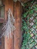 Las hierbas secadas colgaron delante de la casa fotos de archivo libres de regalías