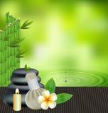 Las hierbas tailandesas dan masajes al balneario con el fondo natural de las hierbas de la compresa Fotos de archivo libres de regalías