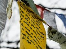 Las historias del niño del explorador escritas en textil encontraron en bosque Imagenes de archivo